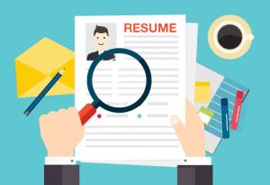 professional resume critique