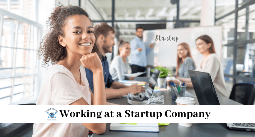 Working for a Startup vs Big Company
